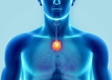 Enerji Testi (Kol- Kas Testi) - Tıbbı Nebi