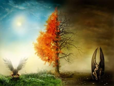 Havas ilmi ile Büyü Arasındaki Fark Nedir?