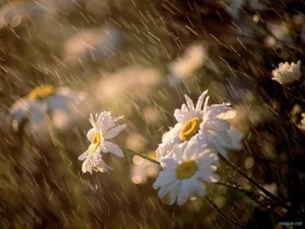 Rızkın Yağmur Gibi Yağması İçin
