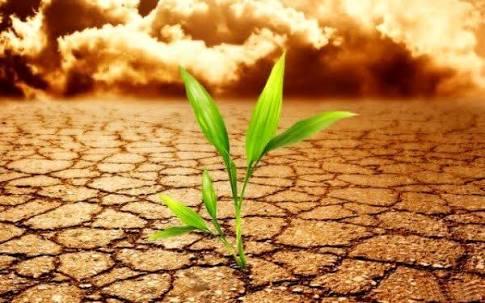 Terrakinezi - Toprağa Hükmetmek